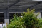 Ashburton Wire fencing 20